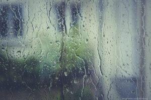 Fensterputz